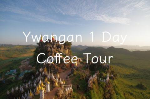 Ywangan Coffee